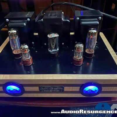 Aric Audio Special KT88 / 120 SE Tube Amplifier